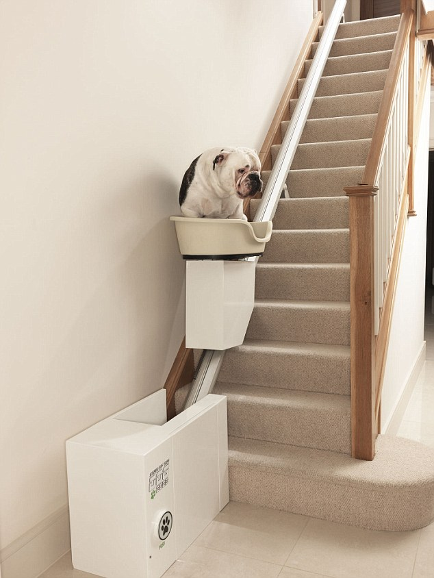 Stair of the dog: world's first stair lift for obese dogs unveil
