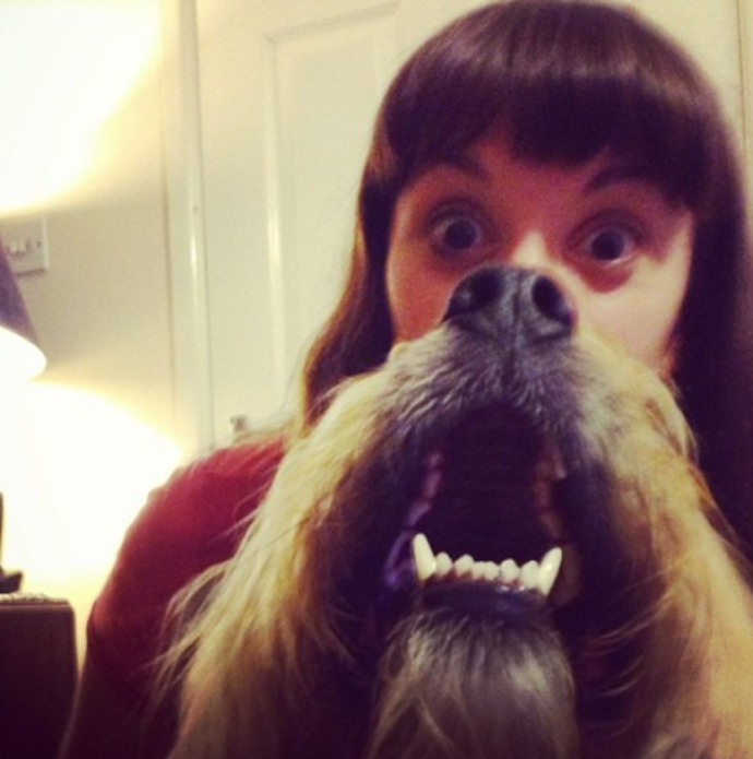 dogbeards1.png
