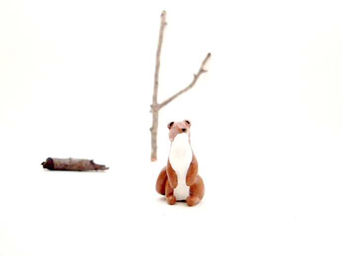 o possomtree