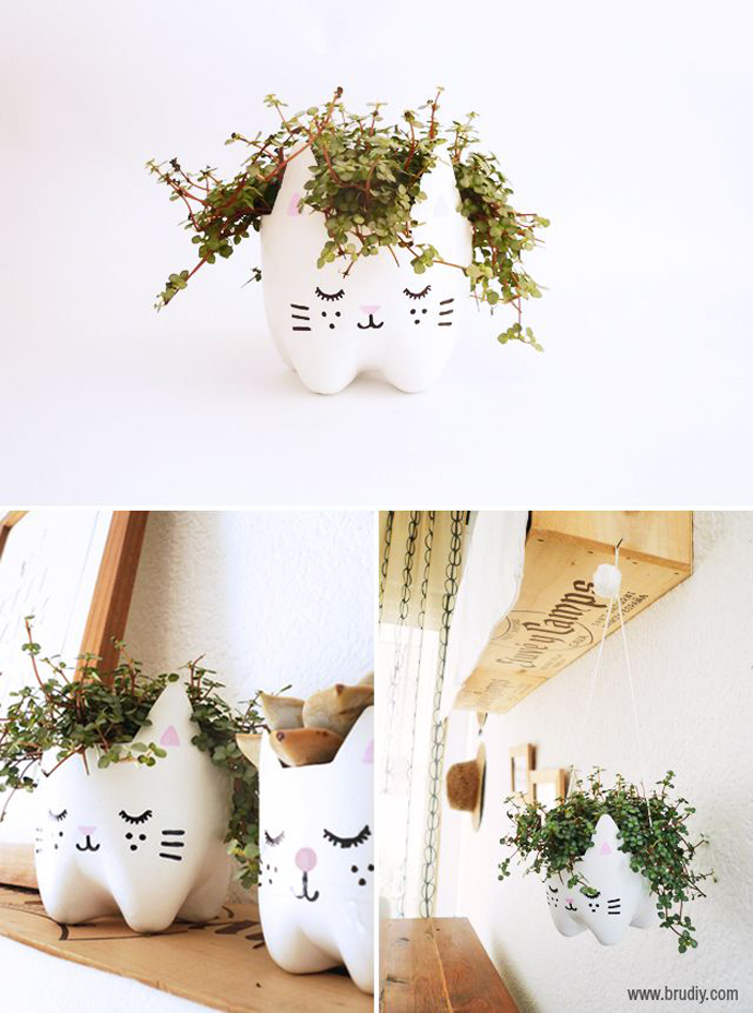 kitty_planter