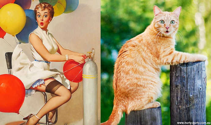 -cats-that-look-like-pin-up-girls-4