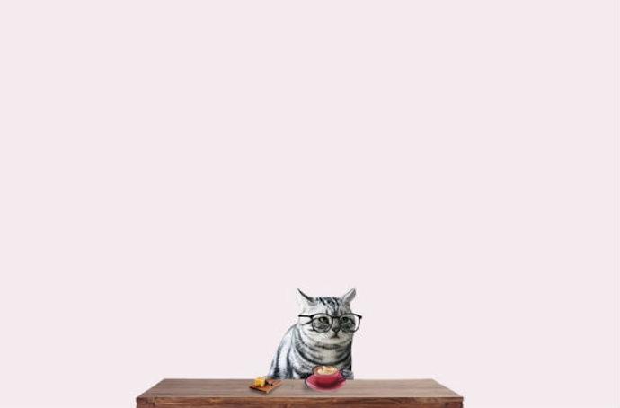 dilok lak cat glasses