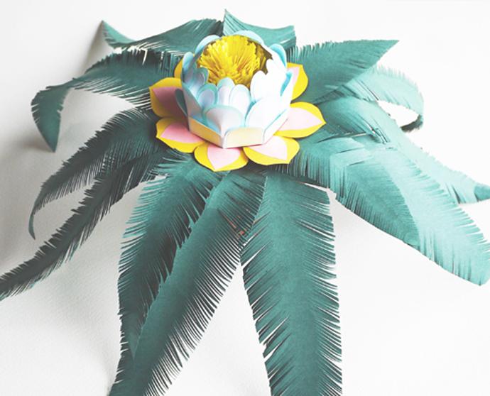 lydia_kasumi_shireff_lotus1