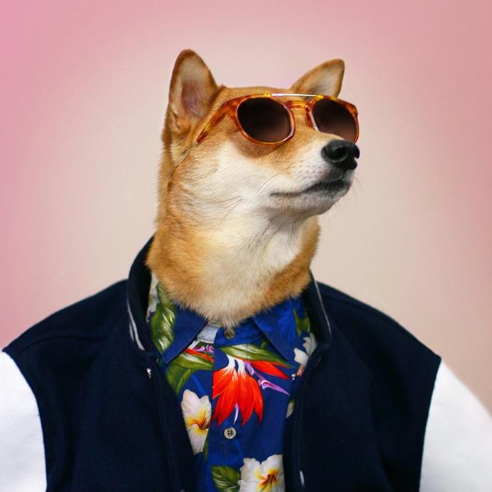 mensweardog10