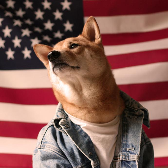 mensweardog14