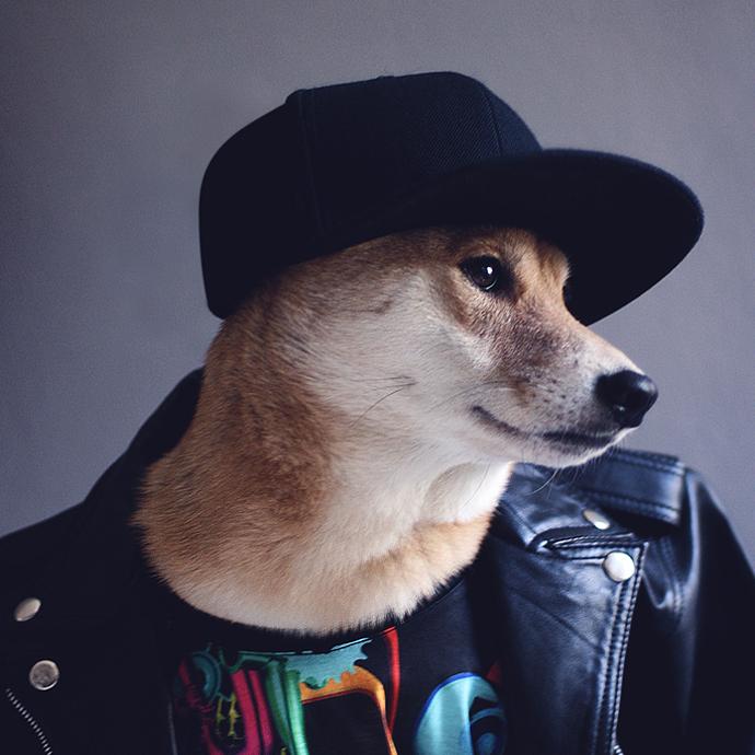 mensweardog7