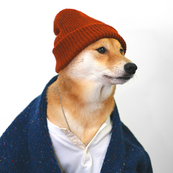 mensweardog8