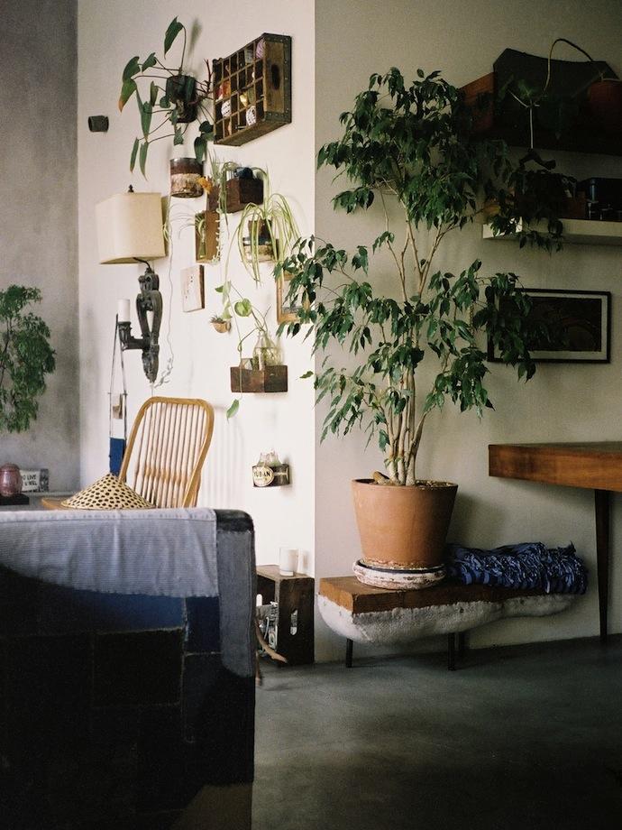 loft-photo-plants-5