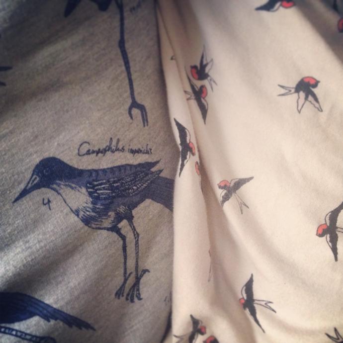 matchy birdy