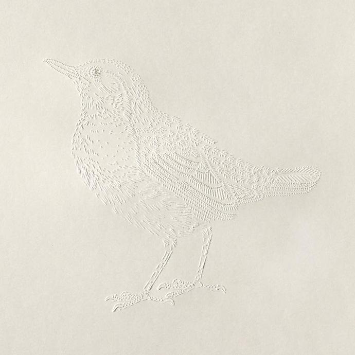 pascale-milalo-bird-1