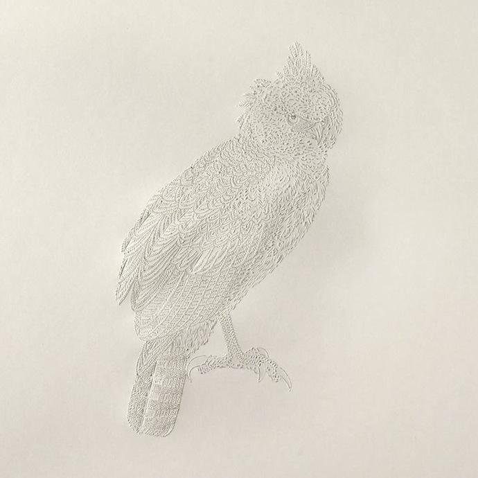 pascale-milalo-bird-4