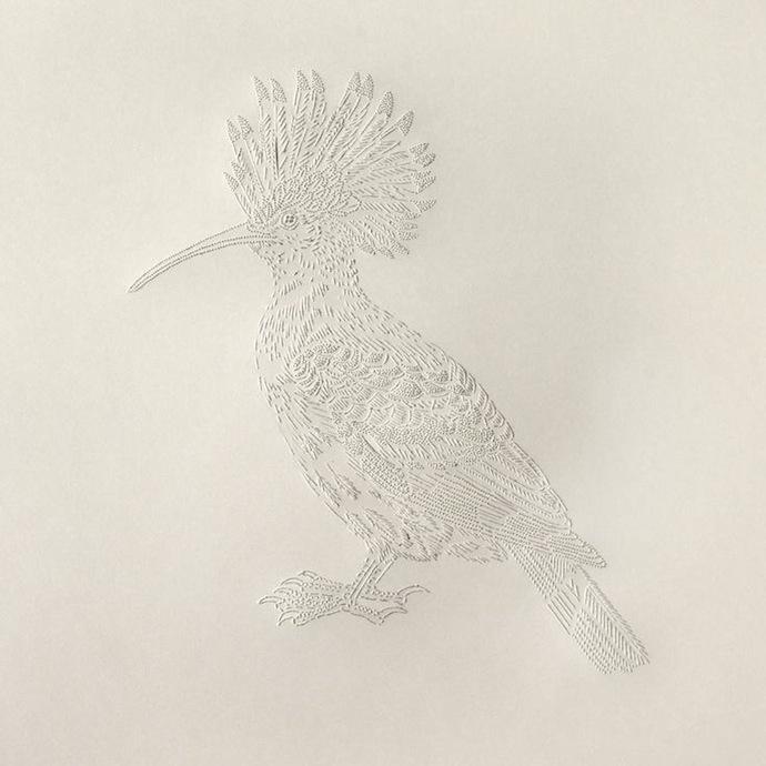 pascale-milalo-bird-5
