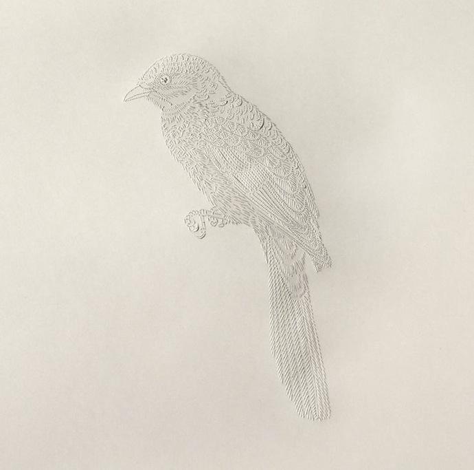 pascale-milalo-bird-6
