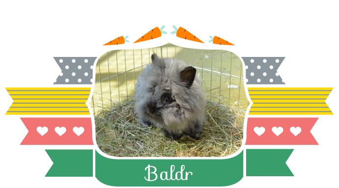 Baldr