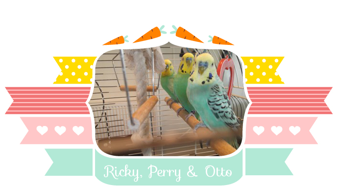 Ricky Perry Otto