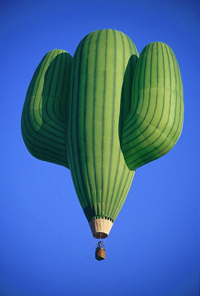 cactus hot air balloon