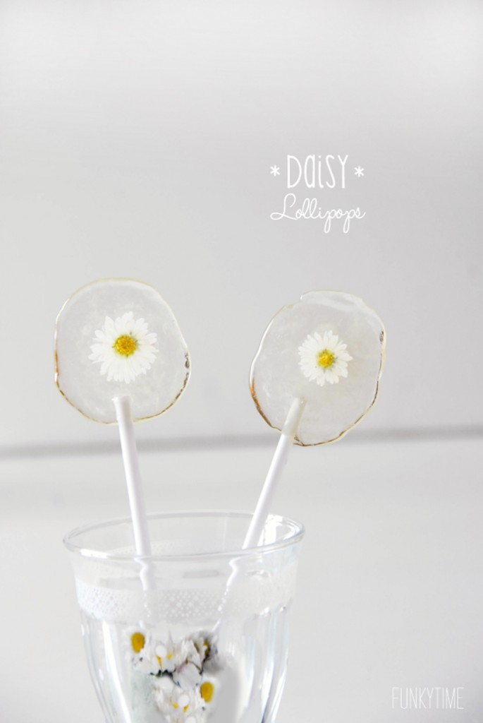 daisy lollipops 1