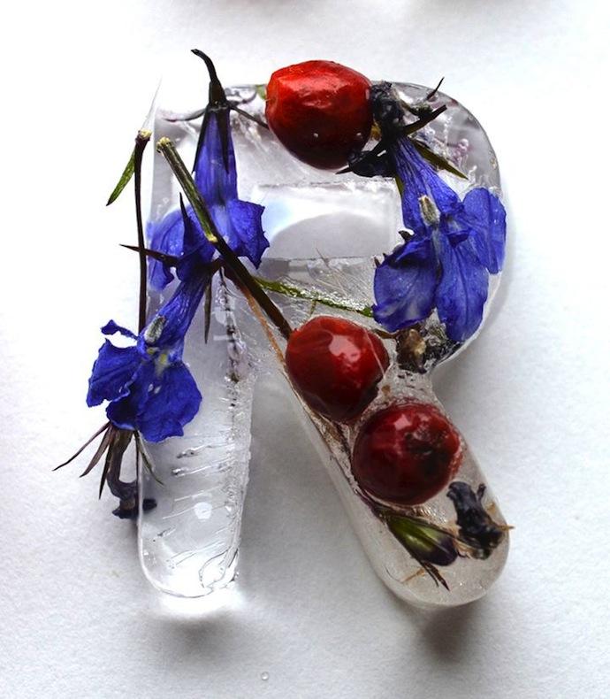 floral-ice-cubes-alphabet-3