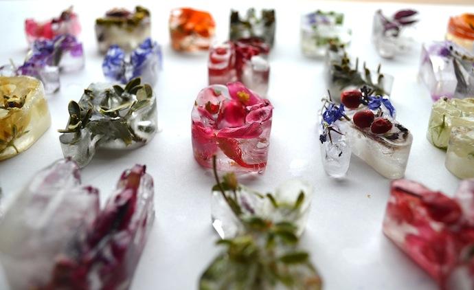 floral-ice-cubes-alphabet-5