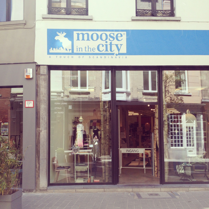 moose in the city 6