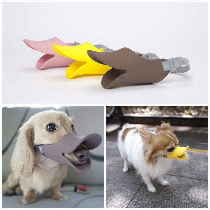 oppo dog muzzle 2