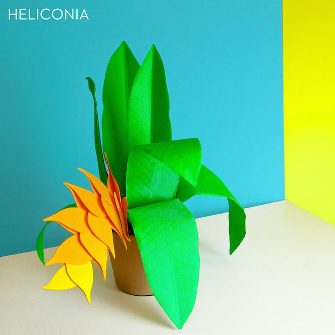 paper plants 1