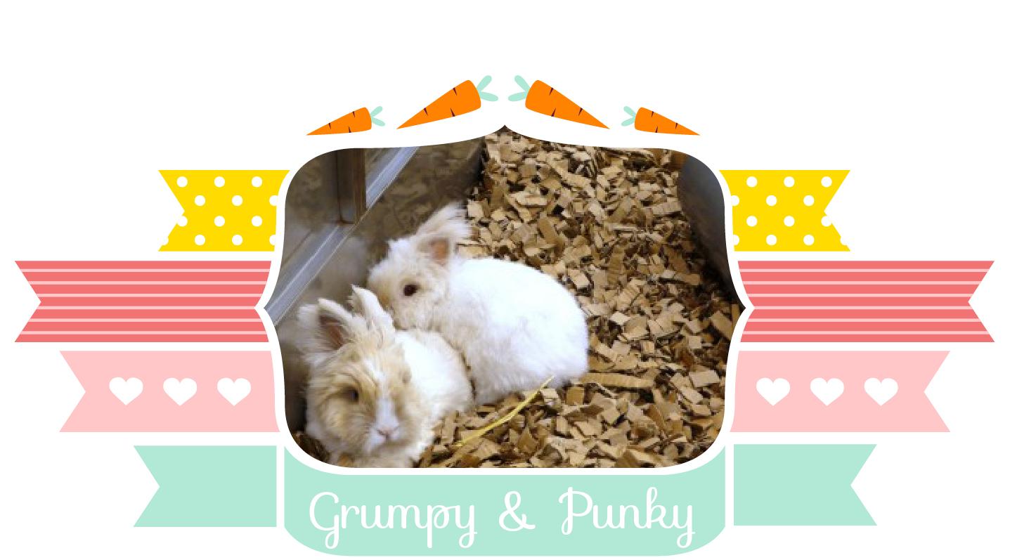 Grumpy & Punky