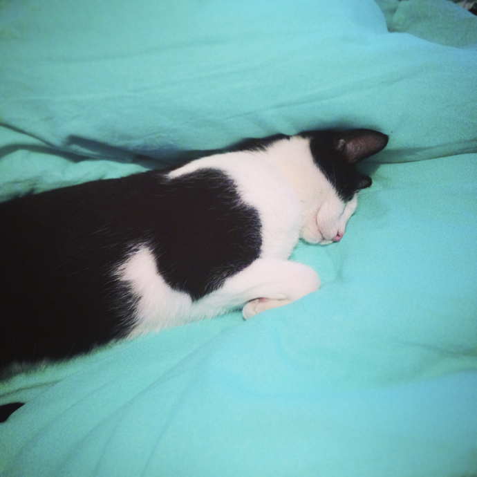 mo slaap
