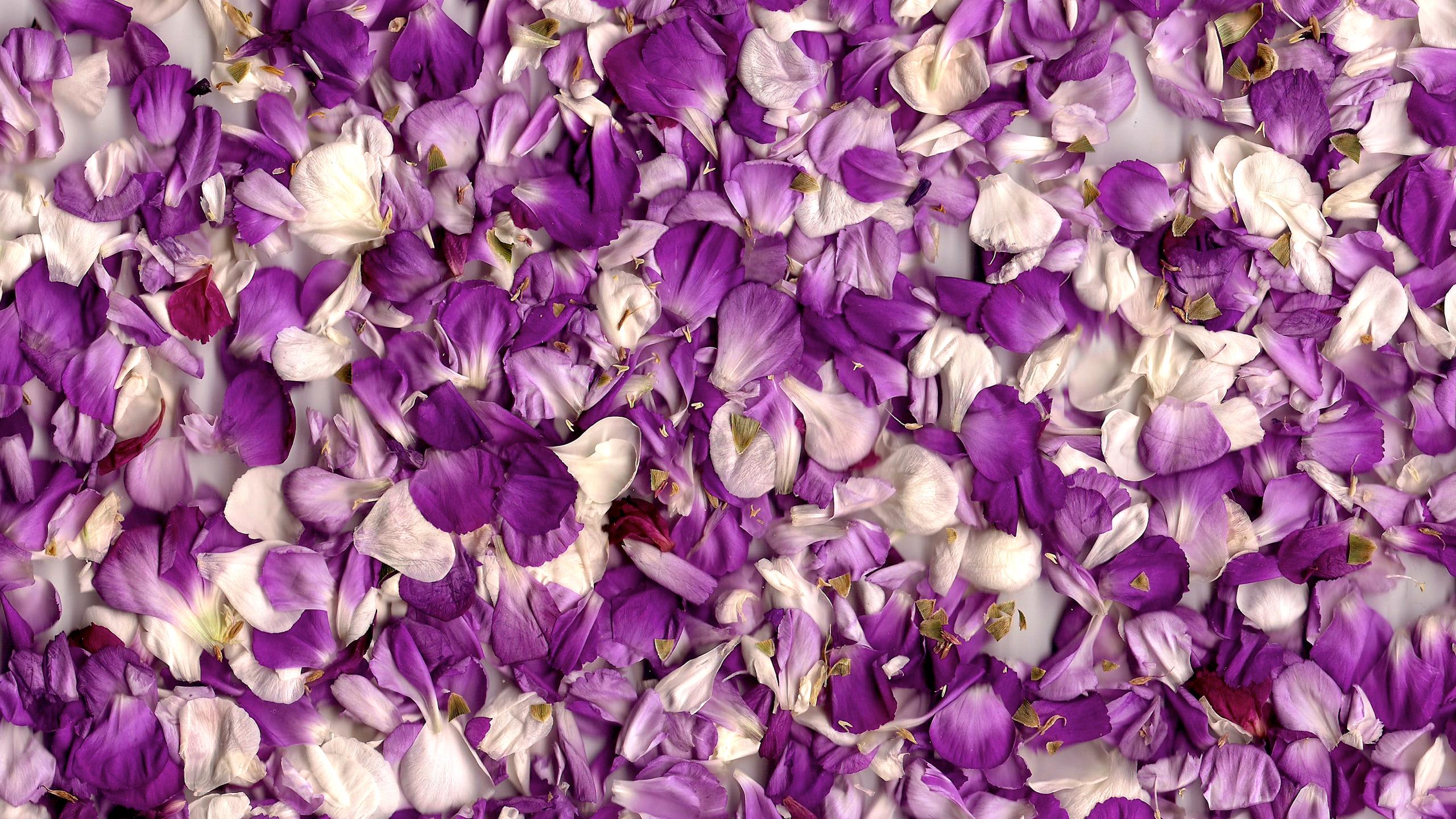 Diy Leftover Flowers Team Confetti