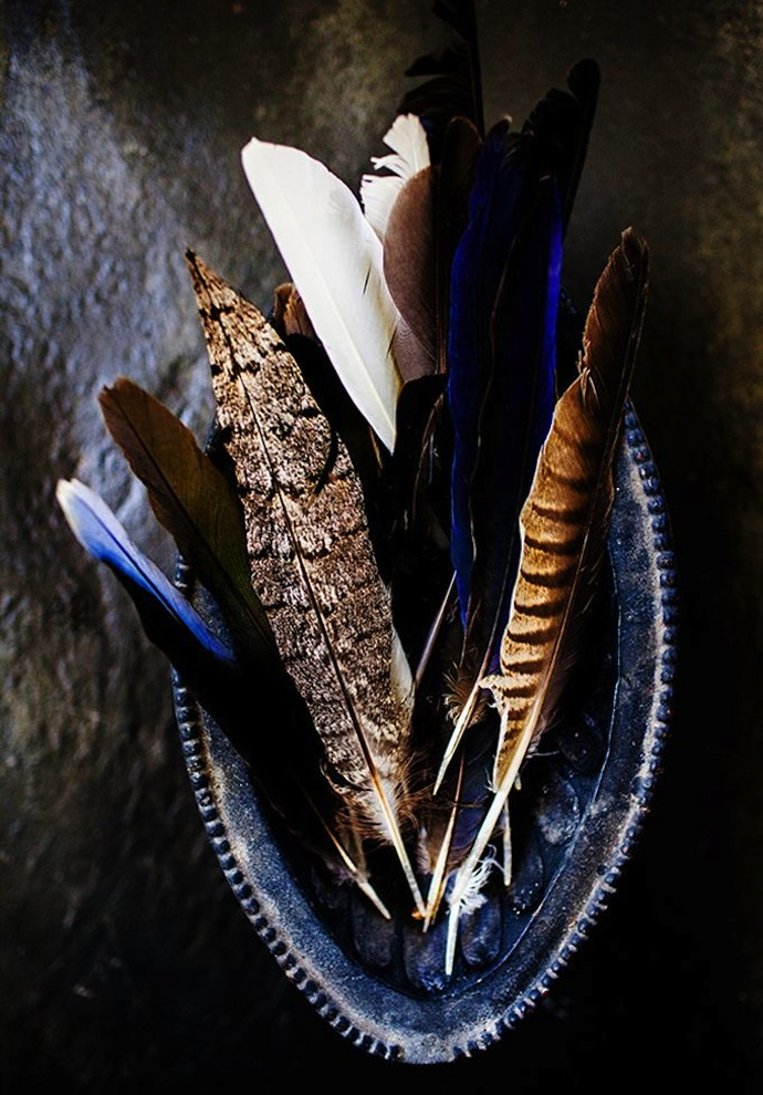 feathers_5