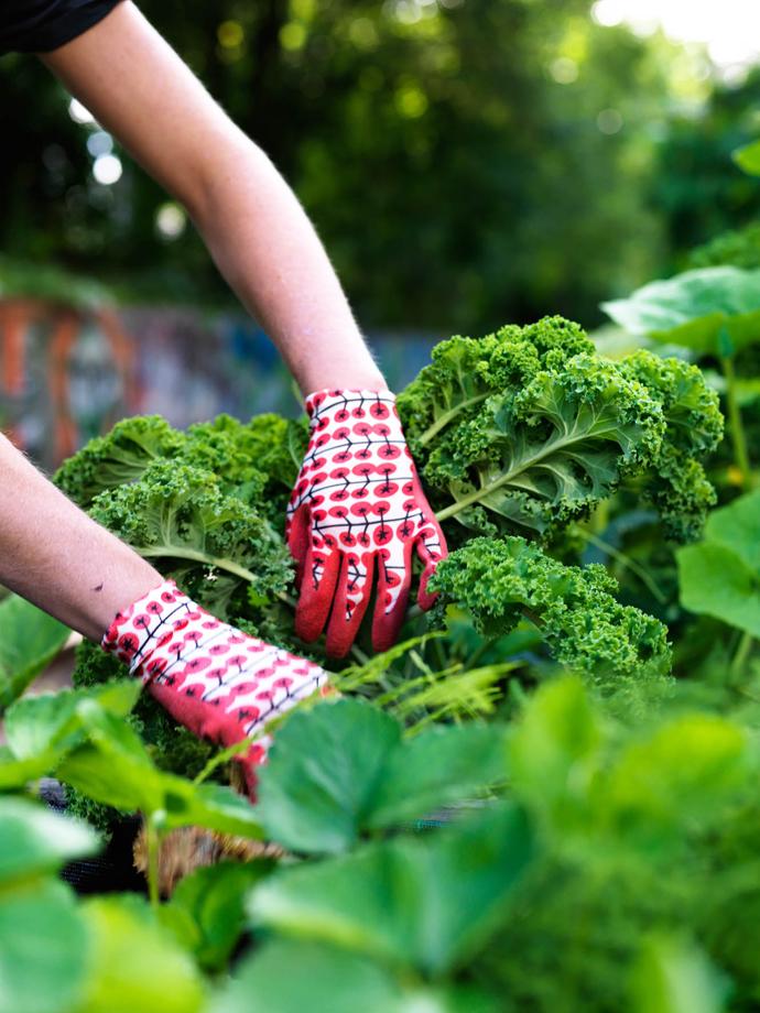 ikea tuincollectie maart 2015 13
