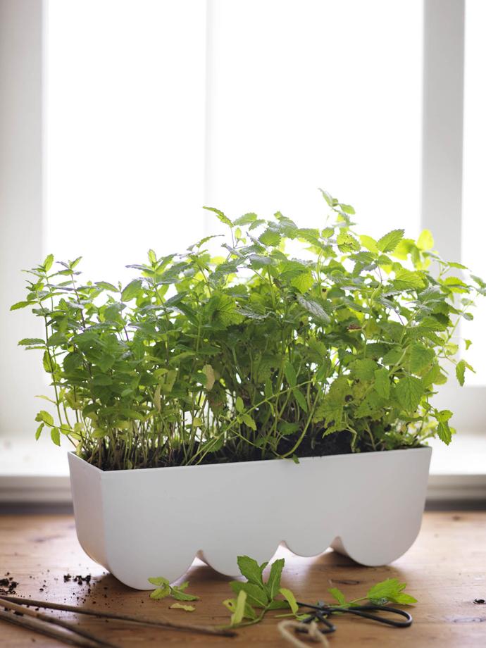 ikea tuincollectie maart 2015 8