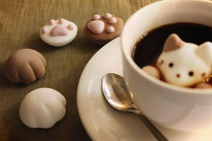 marshmallow cat 2