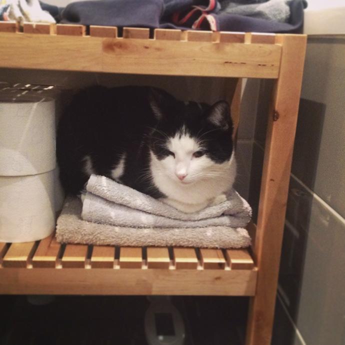 mo badkamer