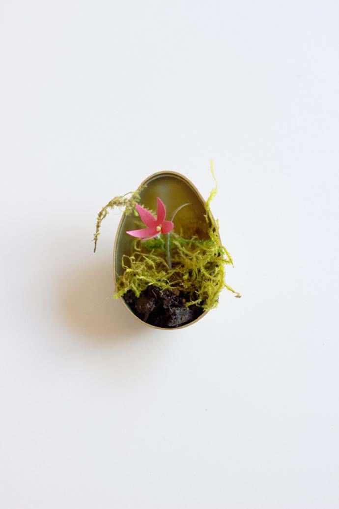 easter eggs terrarium 3