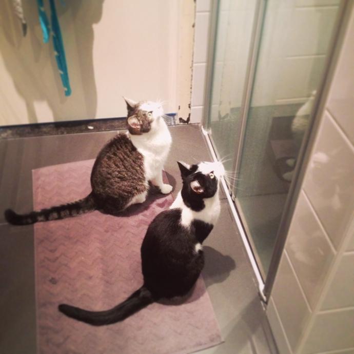 mo en tetkees badkamer 1