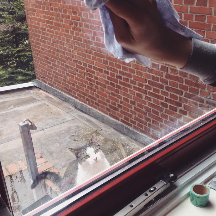 tetkees ramen wassen