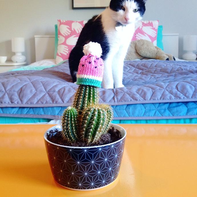 cactus muts