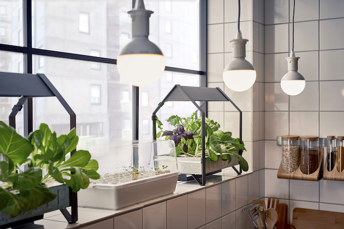 03_PH133381_IKEA_indoor_gardening