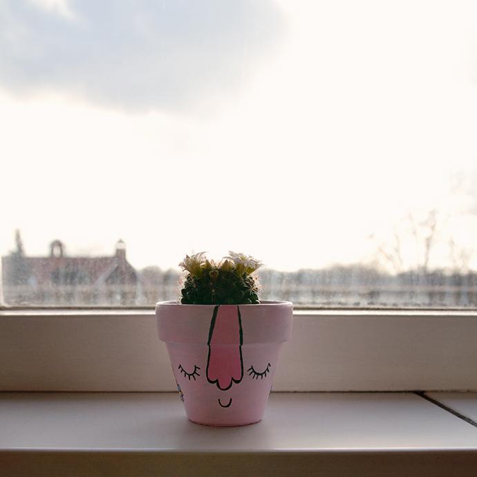 Gastblog4_DIY Cactuskarakters_2