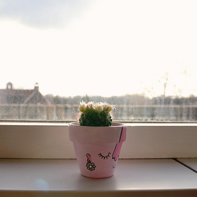 Gastblog4_DIY Cactuskarakters_3