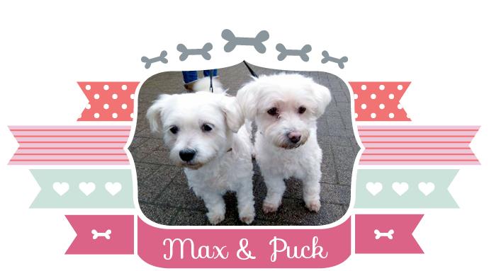 Max&Puck