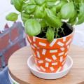 plantenpotjes blogfoto 7