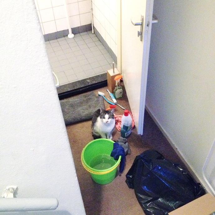 wc opknappen zaterdag
